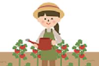 №32 みらい菜園(さいえん)🍅
